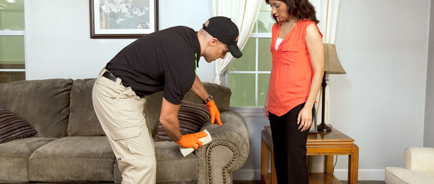 Lexington, TN carpet upholstery cleaning