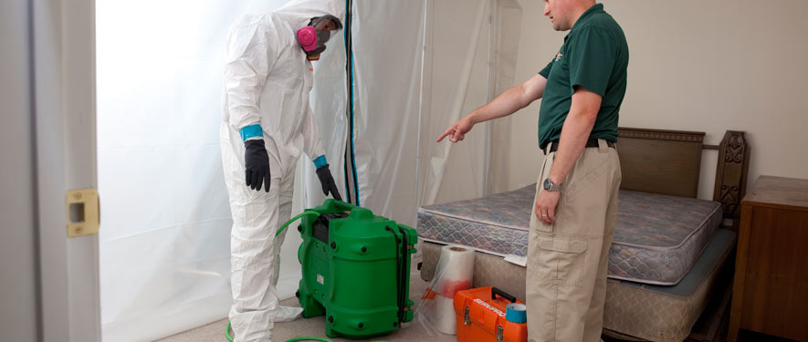 Lexington, TN mold removal process